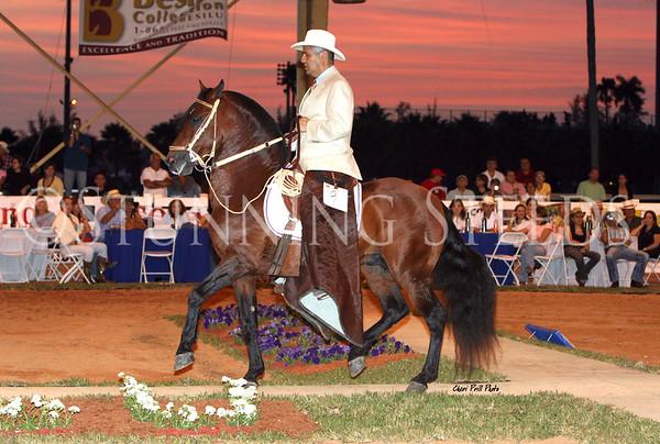 Don Pepe - Miami Stallion Exhibition 2007