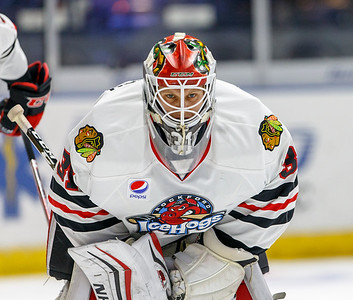 11-30-16 IceHogs vs. Moose