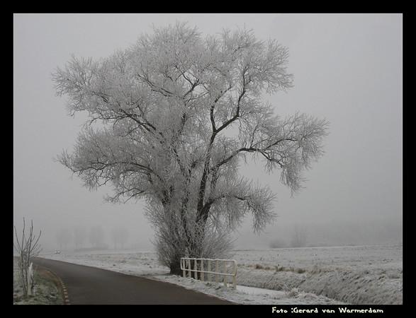 20071222 Winterfoto's Zoetermeer