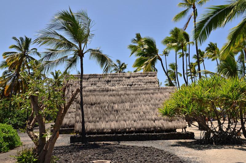 Hawaii March April 2013 053.JPG