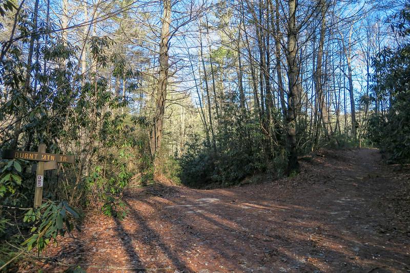 Burnt Mountain/Corn Mill Shoals Trail East Junction -- 2,680'