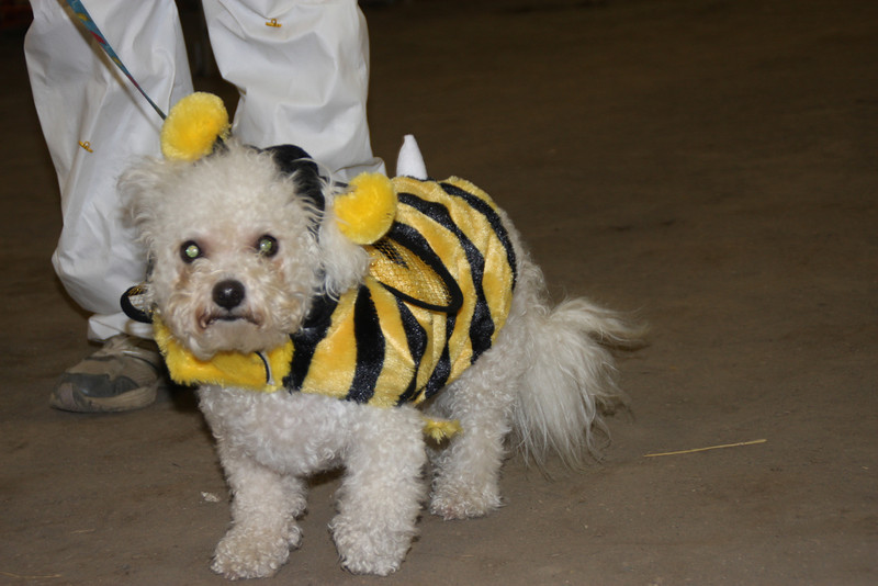 Beekeeper with her BEEchon and PapBEEon.