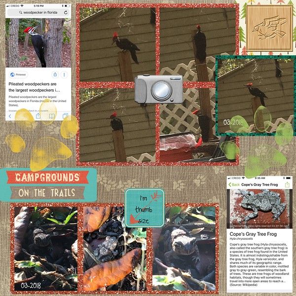 CampSugarfoot-Critters-5-2018-001-Page-2.jpg
