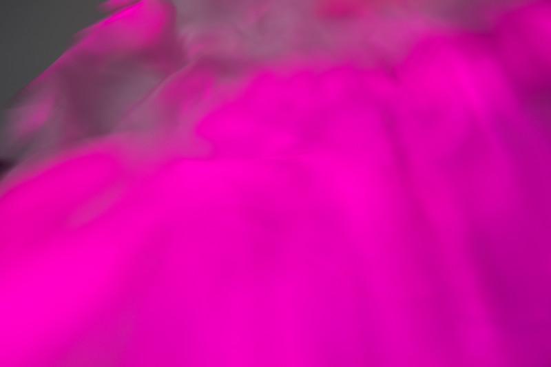 DVP_6094.jpg