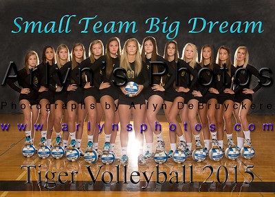 Volleyball Banner Photographs