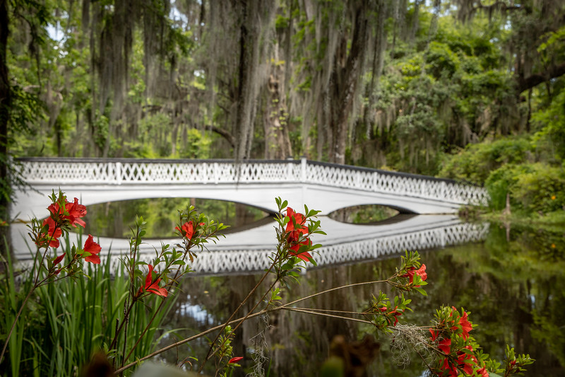 Long Bridge at Magnolia Gardens