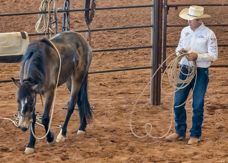Arizona Horsemans Challenge and Expo  April 20, 2019  07_.jpg