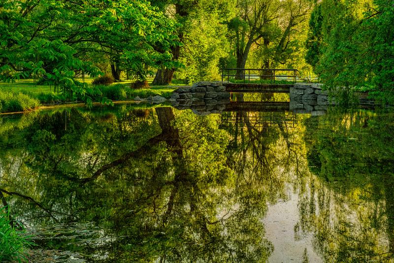 Arboretum pond in spring_May 31-2014_01-Edit.jpg