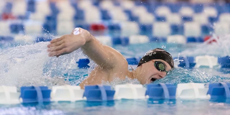2018_KSMetz_Feb09_SHS Centenial League_Swimming_NIKON D5_2380.jpg
