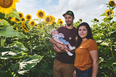 Bishop Family_Sunflowers_Aug 2019