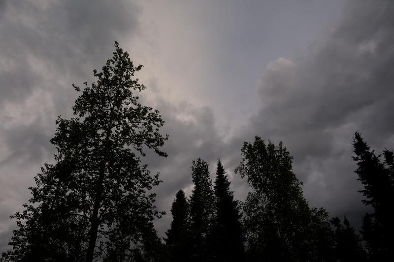 Darkened Skies
