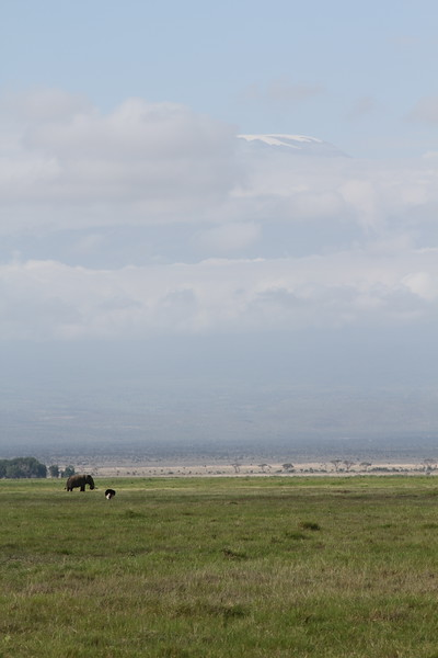 Kenya 2019 #2 811.JPG