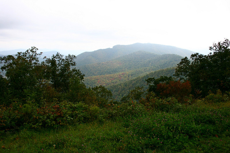 Pisgah Forest 9-30-12 118.jpg