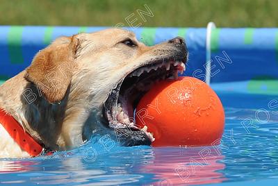 0489 Saturday Splash 2