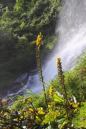 Sakudaira & Otomi Falls