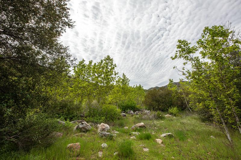Cedar Creek Falls B-266-HDR.jpg