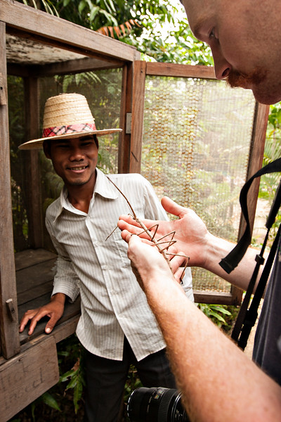 After the Landmine Museum, we jumped in our tuk tuk with the wonderful Mr. Keo and went to the Butterfly Center. There, we met up with this man, who showed us through the center, and let us hold the largest stickbug I have EVER seen. He was pretty cool!
