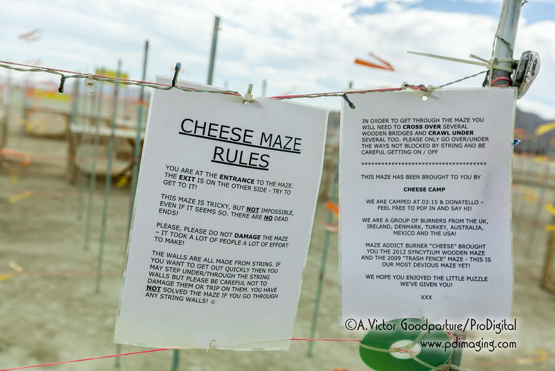 The Cheese Maze was just one of many creative activities disguised as art. The imagination of burners is boundless.