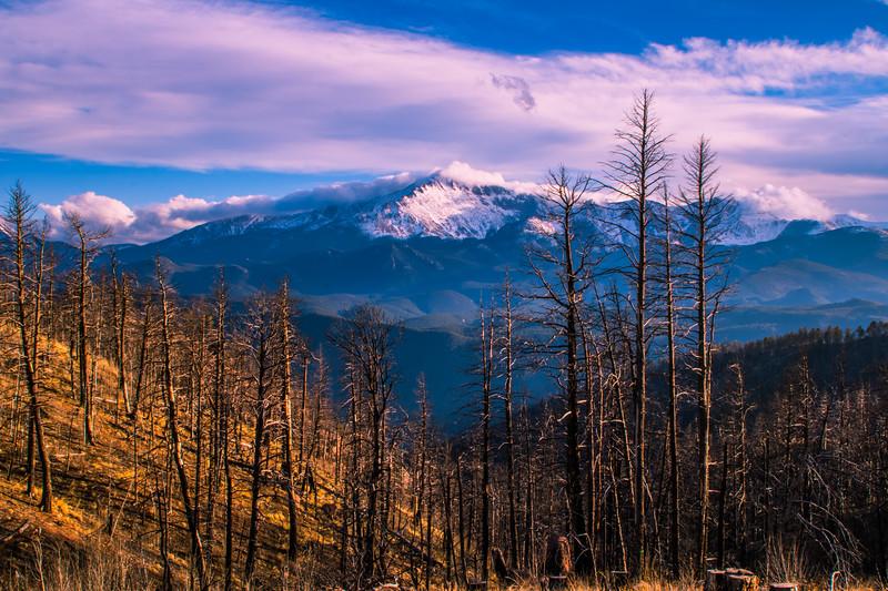 Pikes Peak and Waldo Canyon Burn Area