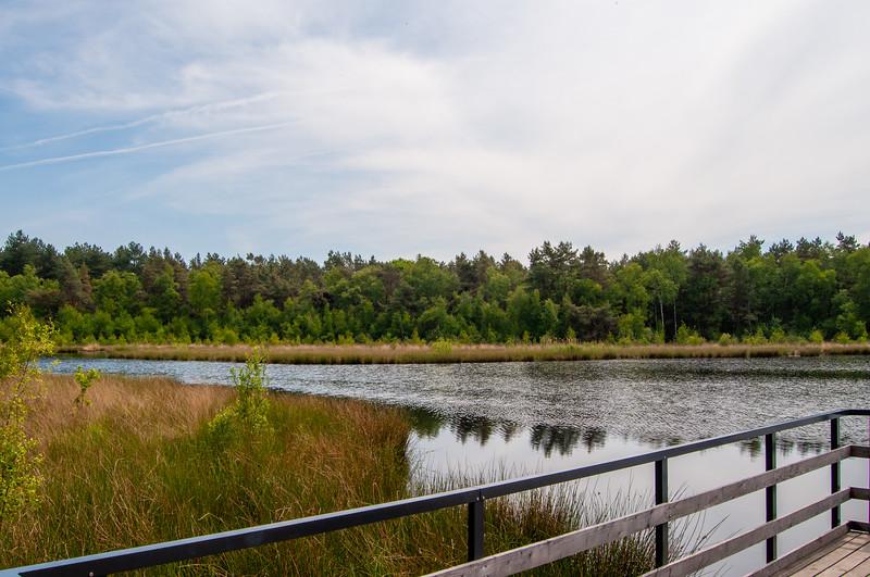 Nationaal Park Hoge Kempen - Duinengordel, omgeving Donderslag 24.jpg