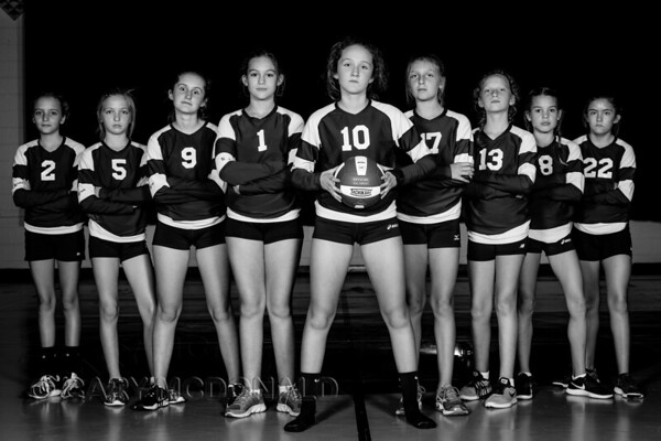 2017 - JV volleyball  Team