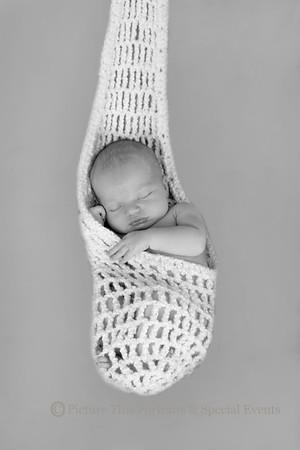 James D. Newborn