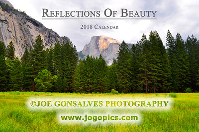 Reflections In A 2018 Calendar - Volume 3