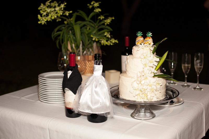 Kona Wedding photos-0173McMillen & Renz Wedding 6-10.jpg