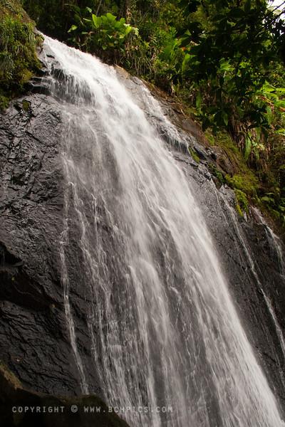 Places > Puerto Rico > El Yunque