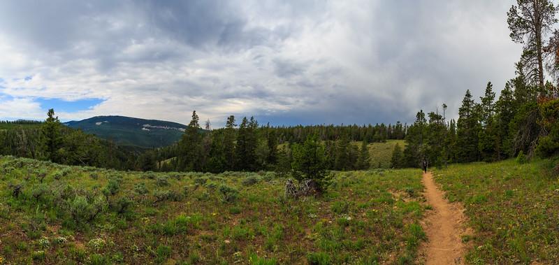 Bucking Mule Trail