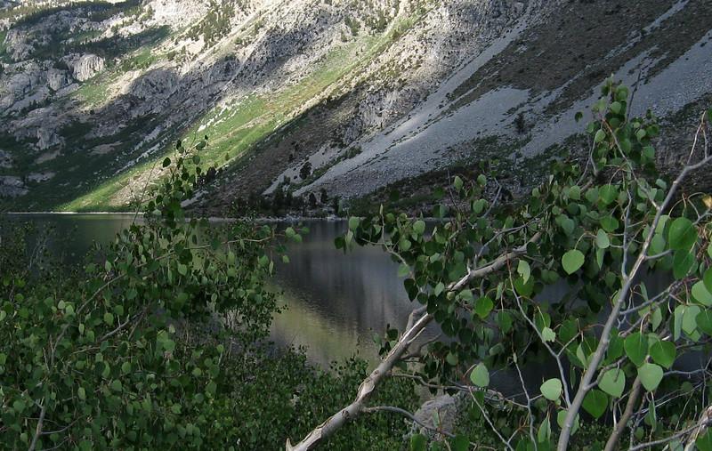 Lake Sabrina reflection and Aspens