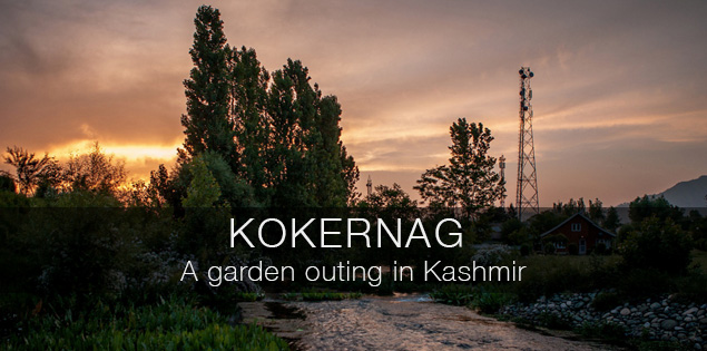 Kokernag in Kashmir, the biggest botanical garden and trout fishery