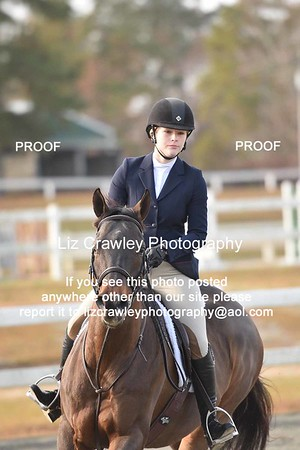 PALMETTO MEDAL AND DERBY FINALS HORSE SHOW CAMDEN 2018  if you would like to order a digital photo please paste this link into your browser http://www.lizcrawleyphotography.com/price-list