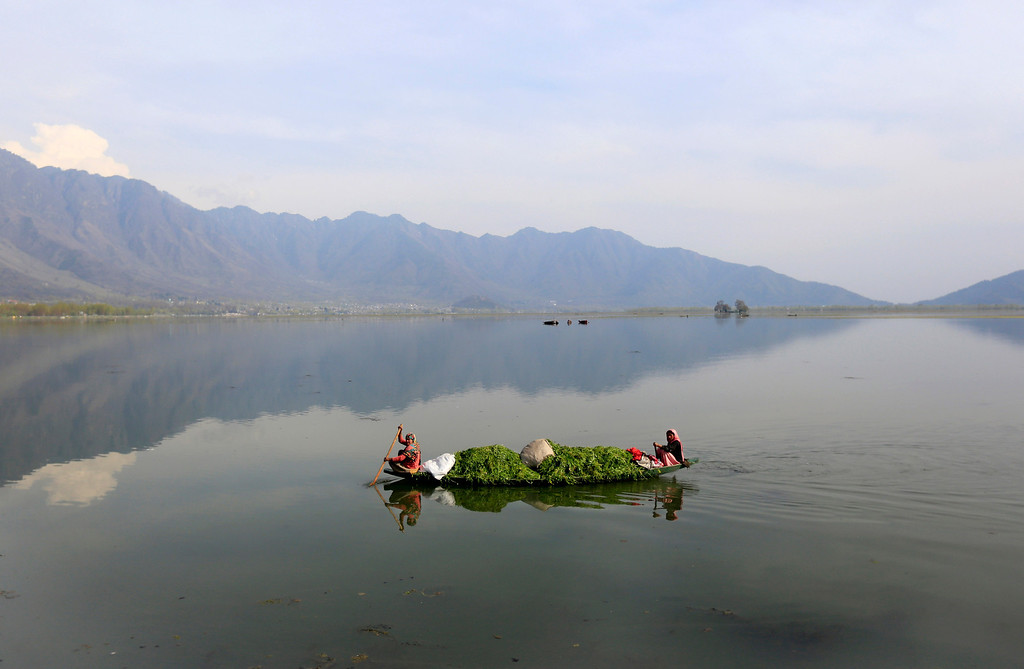 . Kashmiri women row a boat filled with weed after cleaning the Dal Lake on Earth Day, on the outskirts of Srinagar, India, Tuesday, April 22, 2014. The weed-clogged Dal Lake is central to Kashmirís tourist trade and efforts are being made to rescue the lake. In the past two decades the lake has shrunk by more than half, according to environmental study reports. (AP Photo/Dar Yasin)