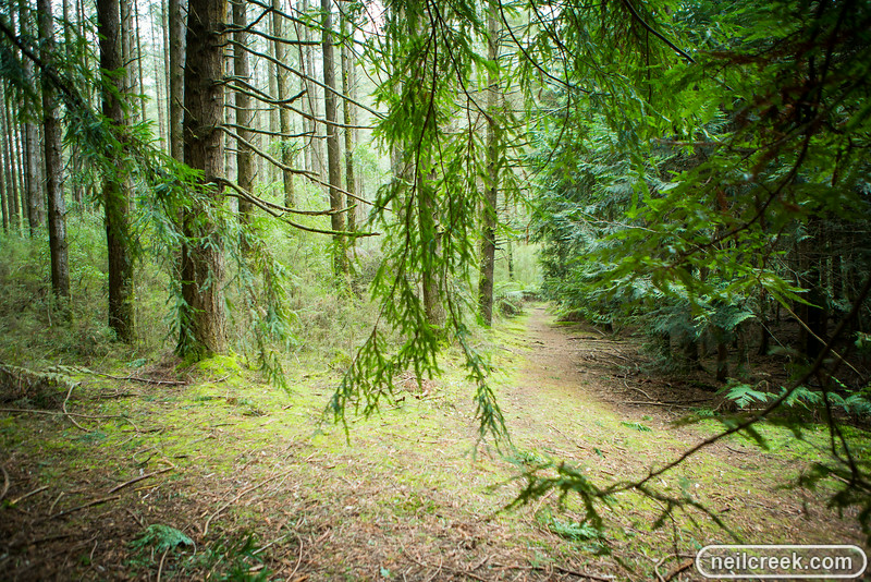 creek-140819-136.jpg
