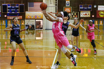 Girls Varsity Basketbball v West Potomac 2/7/20