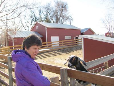 Ft Collins--City Farm 2-18-2011