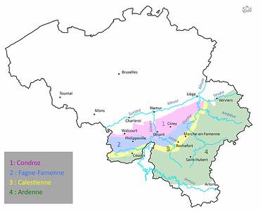 Régions géologiques de la Belgique
