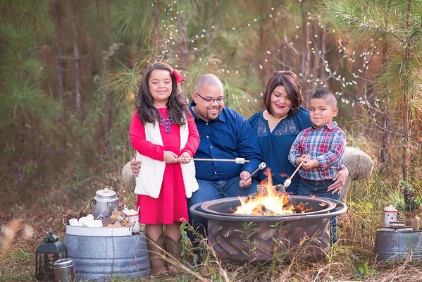 Campfire mini Nov 2018 Mcintosh