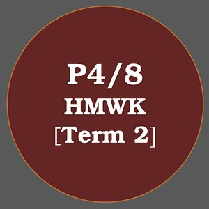 P4/8 HMWK T2
