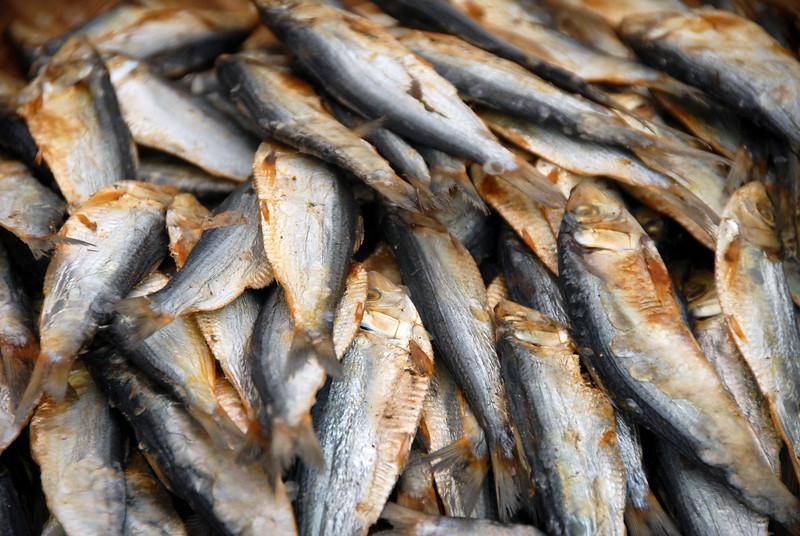 Ibis (Dried Fish)