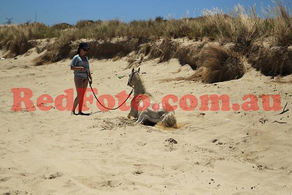 2012 12 24 Naval Base Beach 8 till 12