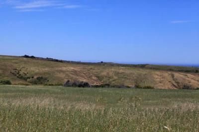 ranch3-39.png