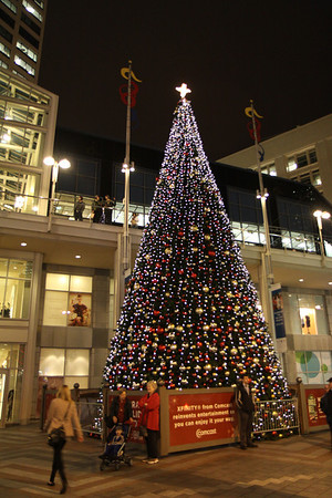 Terrys - Seattle Christmas 2012