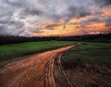 Mississippi delta fields