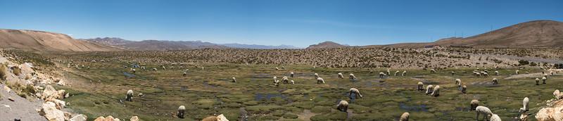 Arequipa-Colca_Canyon-Best-Pano-002.jpg