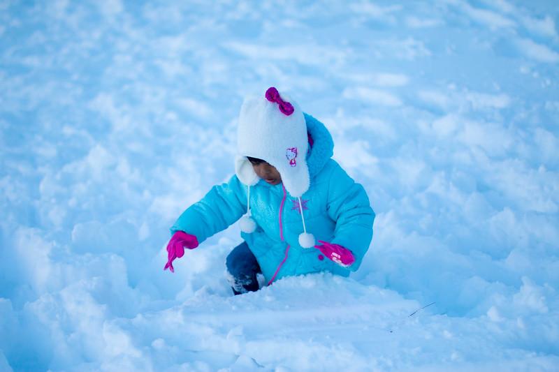 20160124-Snow_20160124_89-1121.jpg