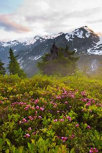 Alpine sunset. Artist Point. Mt. Baker-Snoqualmie National Recreational Area, WA.