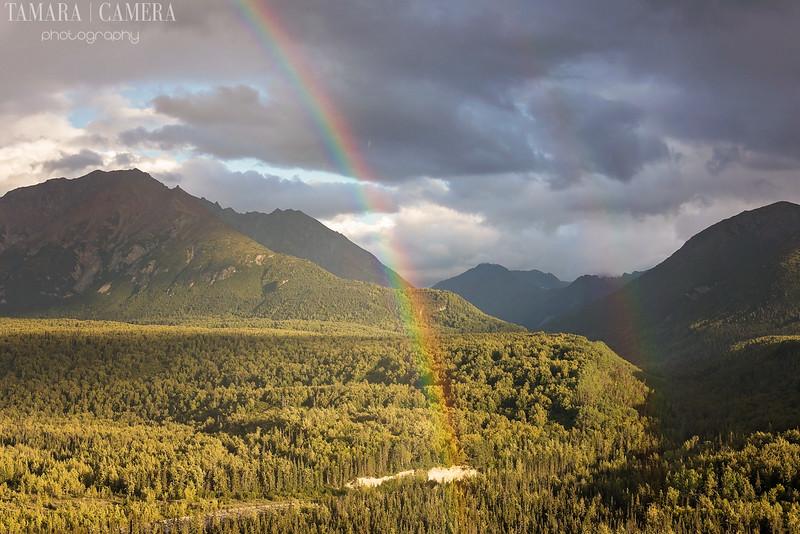 Rainbows-3-2.jpg