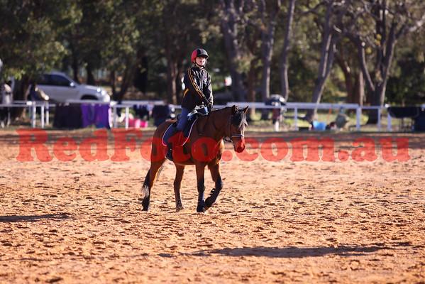 2011 07 14 Walliston Pony Camp